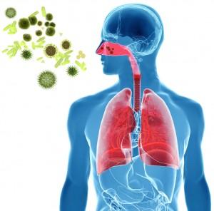 Asthma Triggers in Children